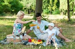 Familie picnick op in openlucht. Royalty-vrije Stock Foto