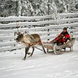Familie am Ren-Schlitten im Schnee Forest Rovaniemi Finland Lapland lizenzfreie stockfotos