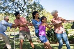 Familie speeltouwtrekwedstrijd in het park Royalty-vrije Stock Fotografie