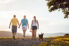 Familie und Hund, die nach Hause gehen Stockfotos