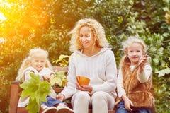 Familie und Kinder im Herbst Stockfoto