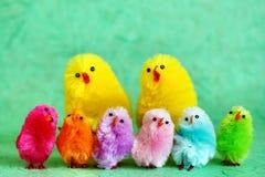 Familie van de kuikens van Pasen Royalty-vrije Stock Foto