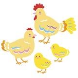 Familie van kippen Royalty-vrije Stock Afbeeldingen