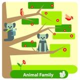 Familie van koala's op een eucalyptusboom met vogels vector illustratie