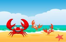Familie van krabben royalty-vrije stock fotografie