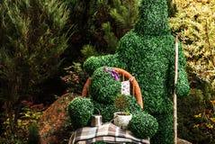 Familie van levende struiken De openluchtfoto van de sprookjestijl Royalty-vrije Stock Afbeelding