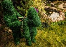 Familie van levende struiken De openluchtfoto van de sprookjestijl Royalty-vrije Stock Foto