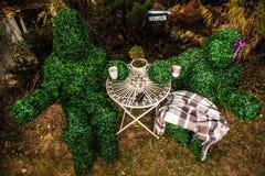 Familie van levende struiken De openluchtfoto van de sprookjestijl Royalty-vrije Stock Afbeeldingen