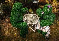 Familie van levende struiken De openluchtfoto van de sprookjestijl Stock Afbeeldingen