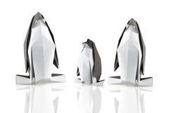 Familie van pinguïnen Stock Afbeeldingen