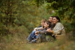 Familie van vier die plukken Stock Fotografie