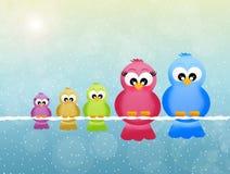 Familie van vogels Stock Afbeelding