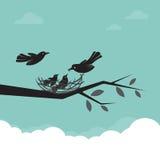 Familie van vogels die de baby voeden Royalty-vrije Stock Afbeelding