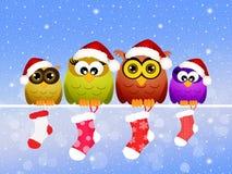 Familie von Eulen am Weihnachten Lizenzfreie Stockfotografie