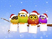 Familie von Eulen am Weihnachten Lizenzfreies Stockfoto