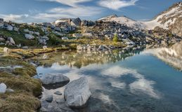 Familie von Gebirgsziegen wandert durch alpinen See Lizenzfreie Stockbilder