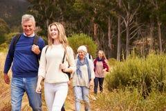Familie von mehreren Generationen, die zusammen durch einen Wald geht Stockbild
