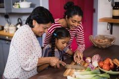 Familie von mehreren Generationen, die zusammen Lebensmittel in der Küche zubereitet stockfotografie