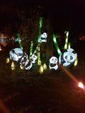 Familie von Pandalampen im Park Stockbild