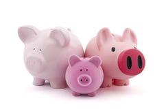 Familie von piggy Querneigungen Lizenzfreies Stockfoto
