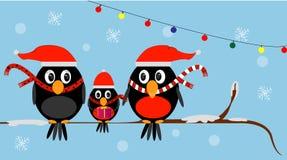 Familie von Weihnachtsvögeln in den roten Hüten lizenzfreie stockfotos