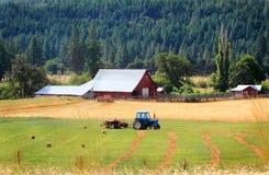 Familielandbouwbedrijf Stock Foto