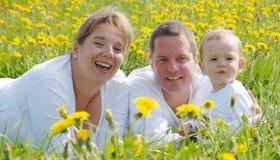 Familien-Abbildung auf dem Löwenzahngebiet Lizenzfreie Stockfotografie