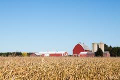 Familien-Bauernhof-Szene im Fall Stockfoto