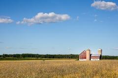 Familien-Bauernhof-Szene mit Kopien-Raum Stockbilder