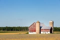 Familien-Bauernhof-Szene mit Kopien-Raum Lizenzfreies Stockfoto