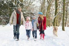Familien-gehender Hund durch Snowy-Waldland Lizenzfreie Stockfotos