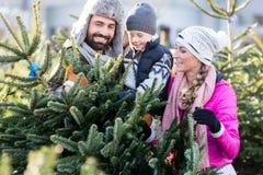 Familien-kaufender Weihnachtsbaum auf Markt lizenzfreies stockbild