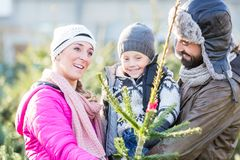 Familien-kaufender Weihnachtsbaum auf Markt stockbild