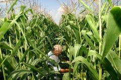 Familien-Landwirtschaft Lizenzfreies Stockfoto