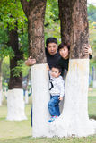 Familien schauen heraus neugierig zwischen den Bäumen Stockbild