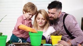 Familienbetriebsblumen im Topf Kind mit Elternsorgfalt für Anlagen zusammen Junge mit Mutter, Vater, der zu Hause im Garten arbei stock video