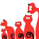 Familienkatzen rot auf einem weißen Hintergrund Stockfotografie