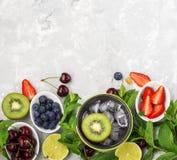 Familienmahlzeiten der gesunden Diät der Bestandteile: frische saftige Früchte und Beeren mit der Minze und Eis, zum eines gesund Lizenzfreie Stockbilder