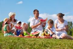 Familienpicknick im Park Lizenzfreies Stockfoto