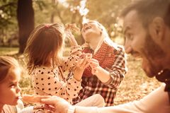 Familienpicknick ist immer Spaß lizenzfreies stockfoto