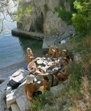 Familienpicknick nahe dem Meer Stockfoto