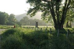 Familienreise herein zur Landschaft Stockfotografie