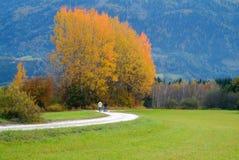 Familienreise im Herbst Stockbild