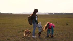 Familiereizen met de hond over de vlaktes en de bergen moeder, dochters en van huishuisdieren toeristen groepswerk van a stock footage