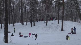 Families with children sledding down the snowy hills in the Park stock video