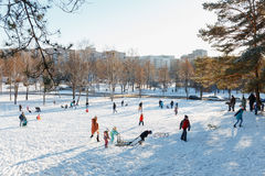 Families enjoy sledding on a snowy hill Royalty Free Stock Photo