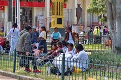 Families in het park stock afbeelding
