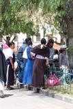 Families in het park stock afbeeldingen