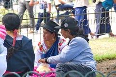 Families in het park royalty-vrije stock foto