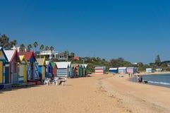Families met kinderen die de zomerdag op het strand van Brighton in Melbourne enjoing stock afbeeldingen